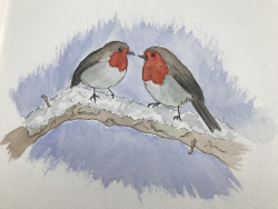 Couple de rouges-gorges (aquarelle)